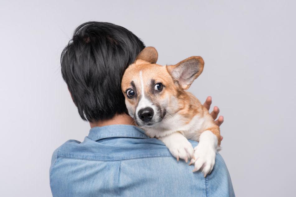 """Nicht Dein Hund? Dann sollte er auch nicht als """"Frauen-Köder"""" dienen!"""