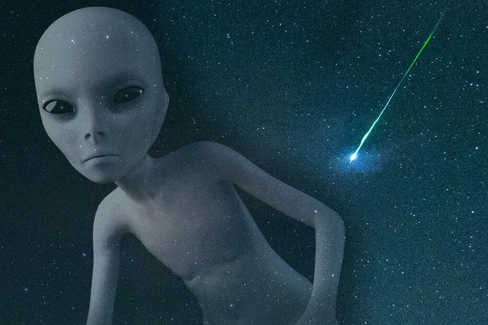 Wissenschaftler suchen jahrelang über 1000 Sterne ab: Das haben sie entdeckt