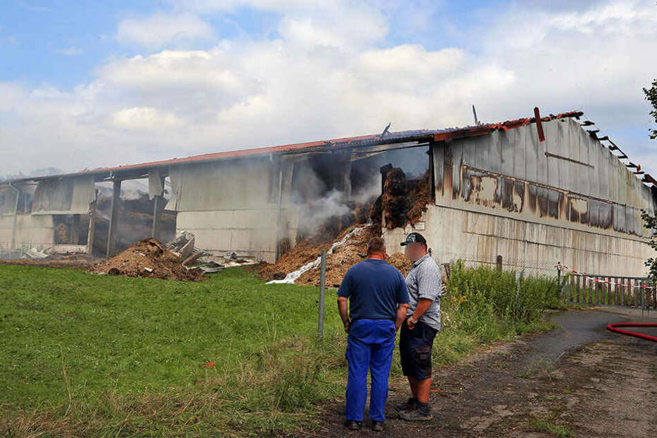 Brandstiftung? Strohlager brennt lichterloh: 350.000 Euro Schaden