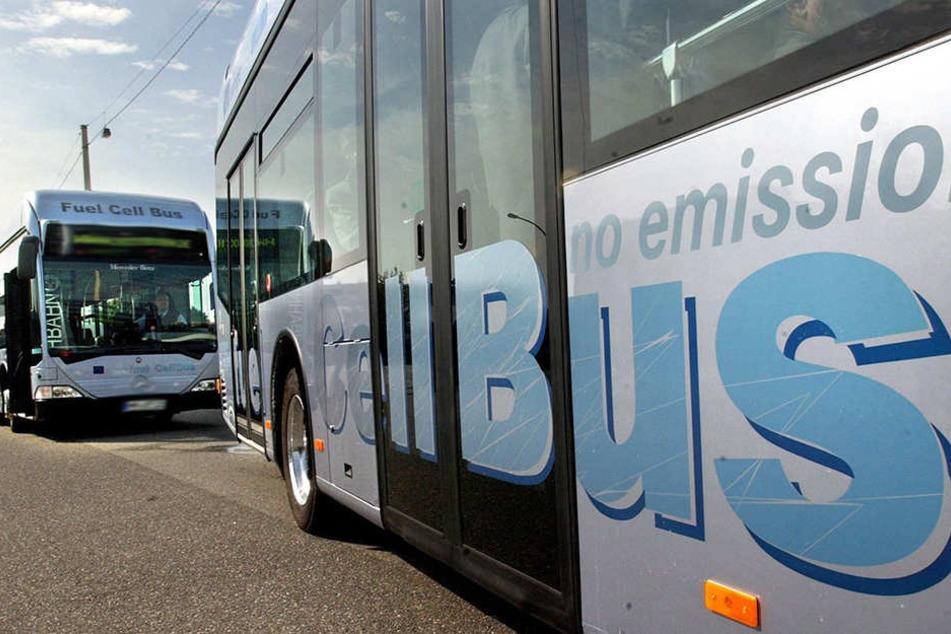 Beim Einsteigen in den Bus geriet der 32-jährige mit der Fahrerin (56) aneinander.