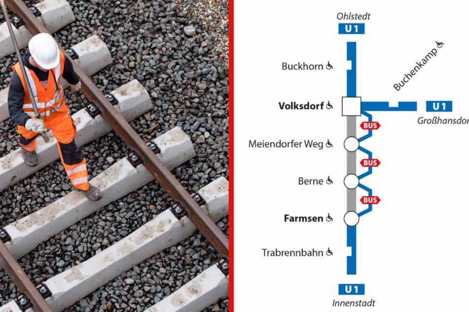 Die Haltestellen werden am Wochenende nur mit Ersatzbussen angefahren: Farmsen (aus Richtung Volksdorf kommend), Berne, Meiendorfer Weg und Volksdorf (aus Richtung Innenstadt kommend).