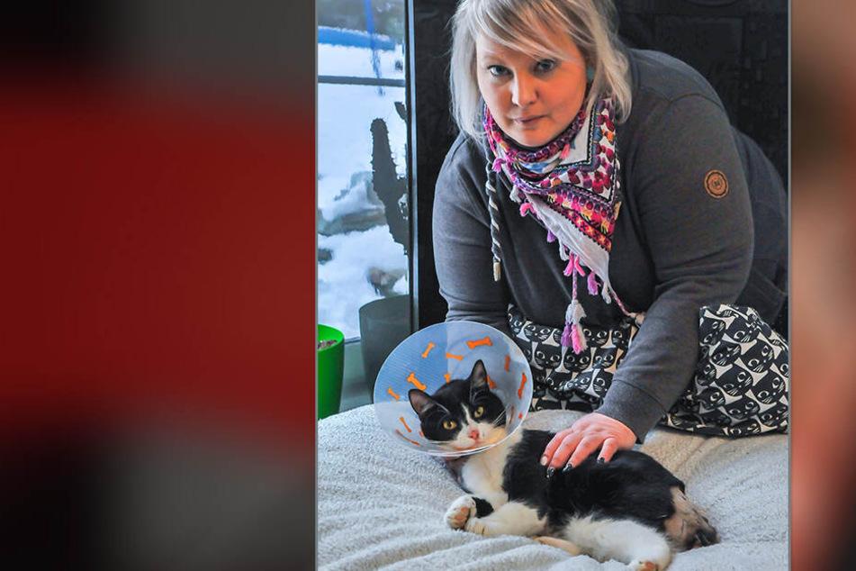 Corina Tittmann (38) pflegt ihren misshandelten Kater Rudolf.