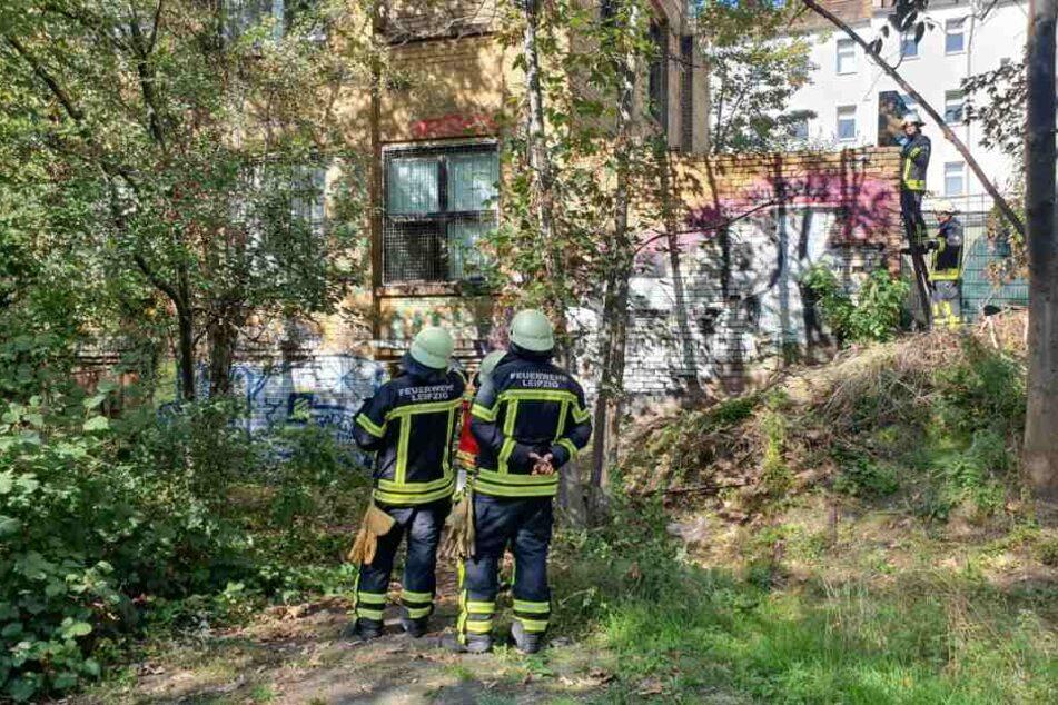 An diesem Gebäude in der Mierendorffstraße in Anger-Crottendorf wurde ein Molotow-Cocktail gefunden.