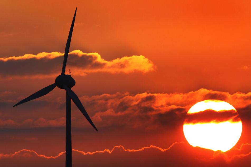 Sonne top, Wind flop: Beim Zeugnis für Bayern zur natürlichen Energiegewinnung ist noch Luft nach oben.