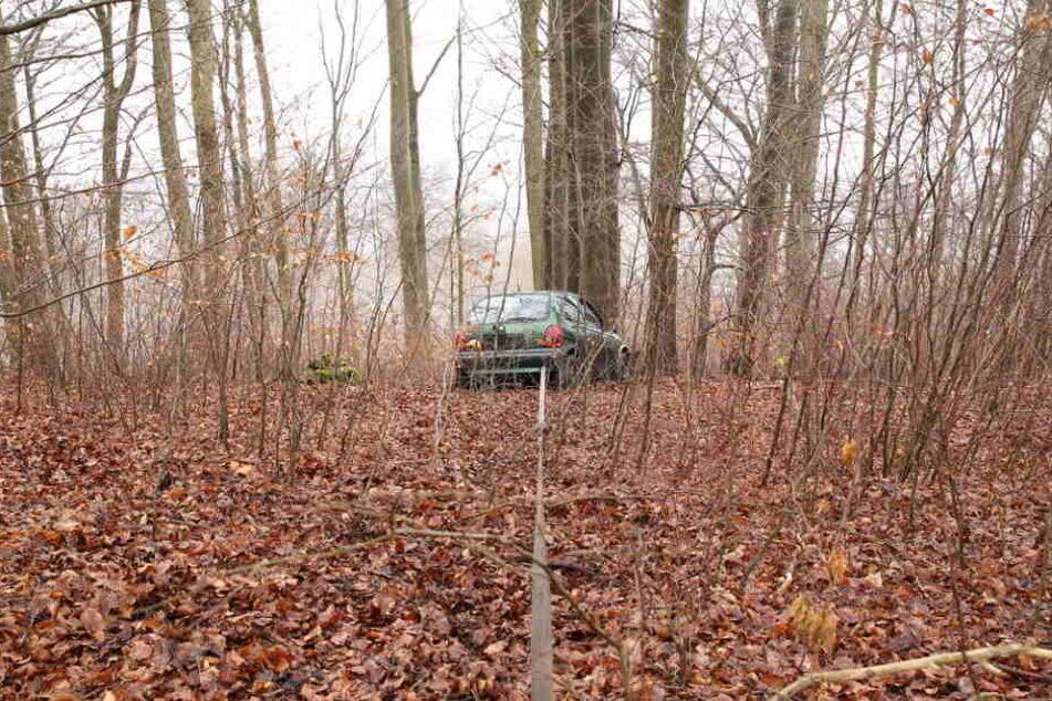 Mit Spanngurten war der Wagen an den Bäumen befestigt.