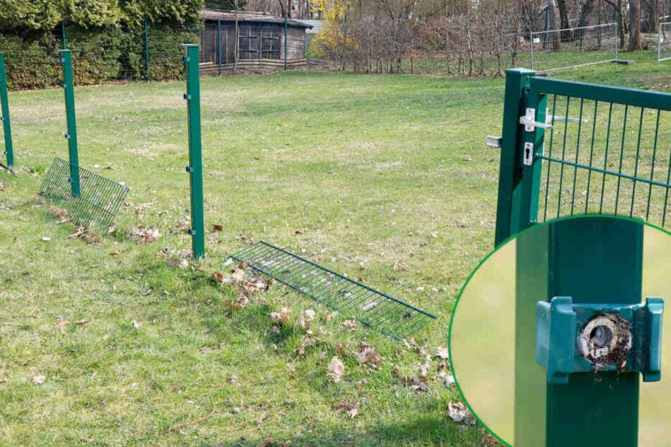 Chemnitz: Diebe klauen Zaun von Hundesportverein