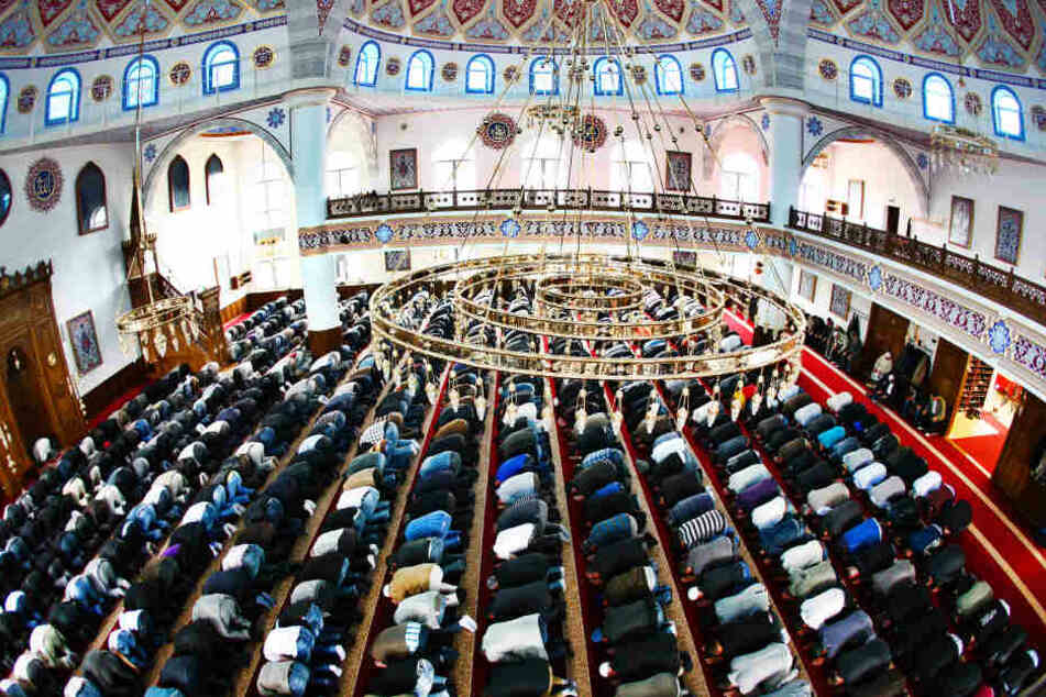 Muslime beten in der Merkez-Moschee in Duisburg (Nordrhein-Westfalen) während des Freitagsgebetes (Archivbild).