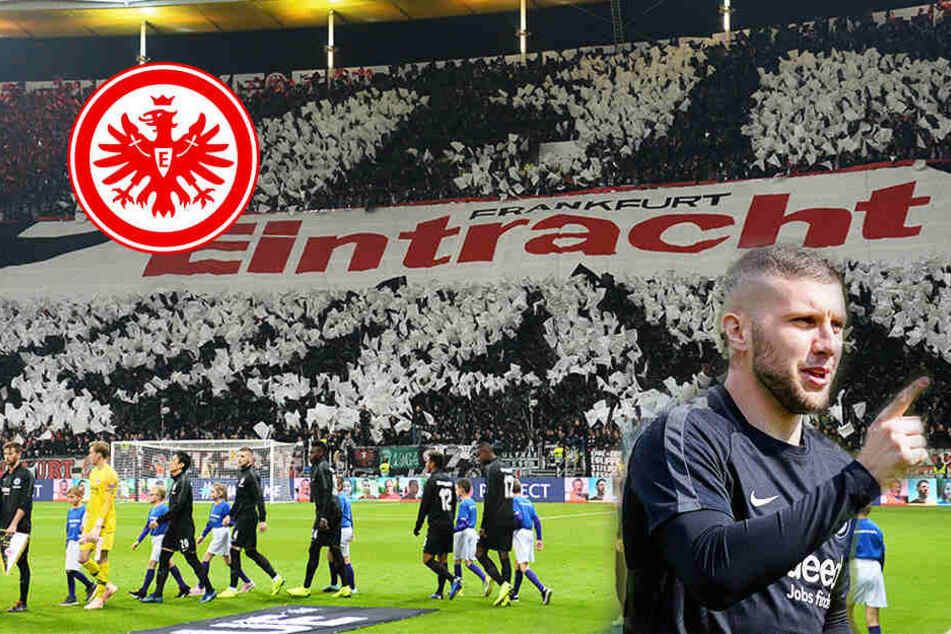 Euro-League-Quali: Frankfurt trifft auf Rekordmeister Estlands