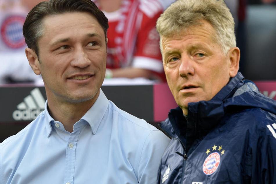 Niko Kovac (l.) wird nicht auf die Dienste von Peter Hermann setzen können.