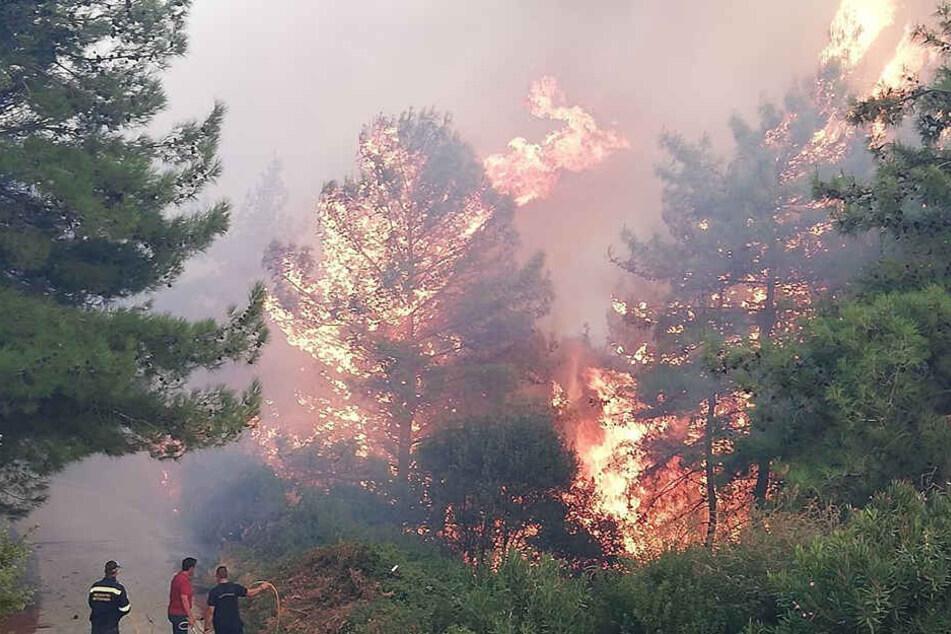 Feuerhölle in Griechenland! Hotels evakuiert, 1000 Urlauber in Notunterkünften