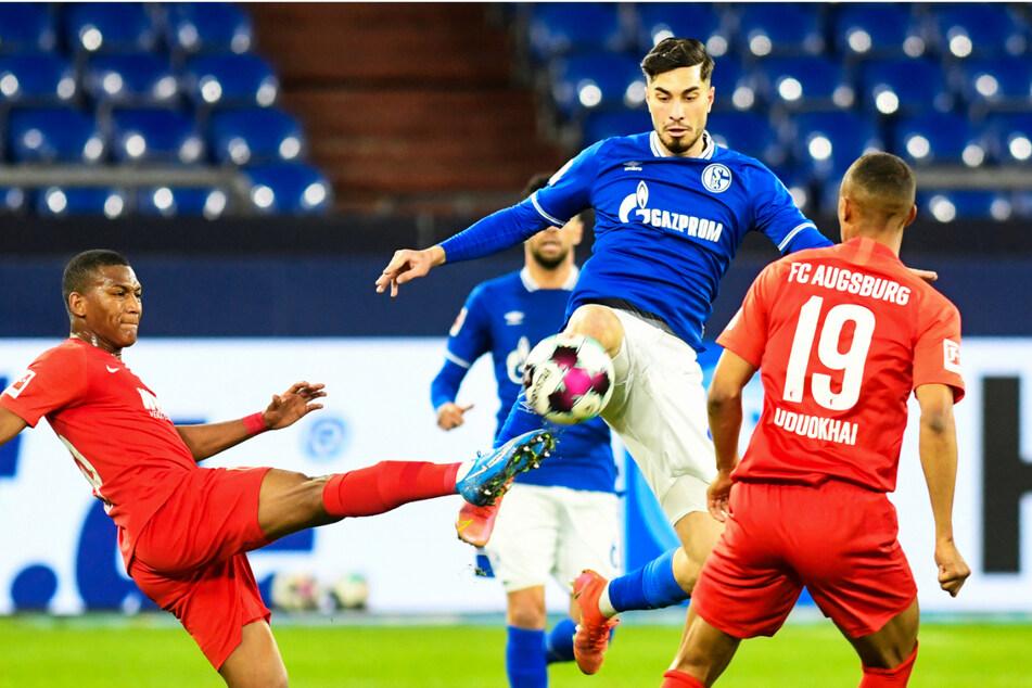 Suat Serdar (2.v.r.) schoss den FC Schalke 04 früh in Führung - und damit am Ende auch zum Heimerfolg!