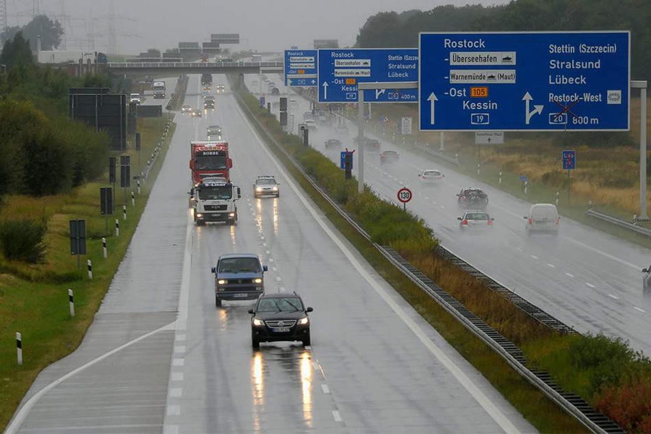 Auf der A19 wurden am Freitagmorgen drei Ponys getötet.