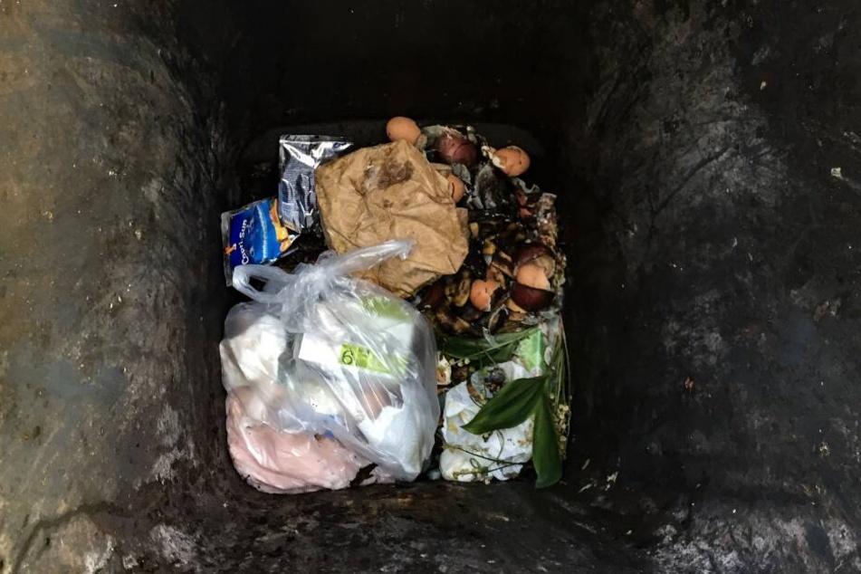 Gewohntes Bild in deutschen Bio-Mülltonnen: Die Plastiktüte wird einfach mit hinein geworfen.