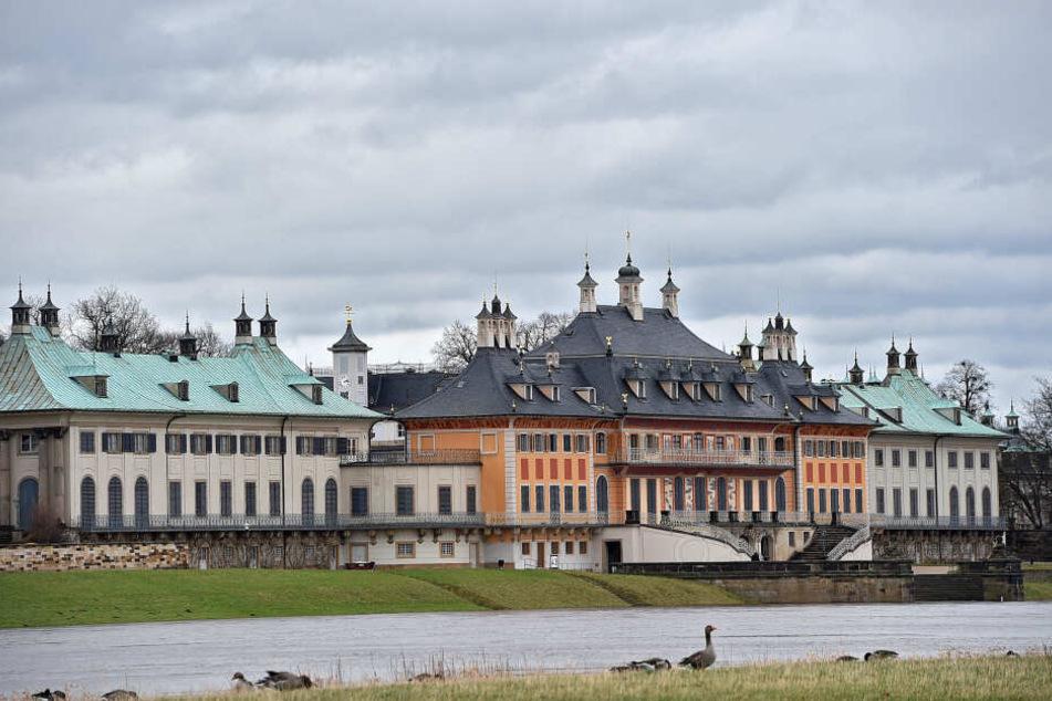 Die Leiche wurde vor dem Schloss Pillnitz angespült. (Archivbild)