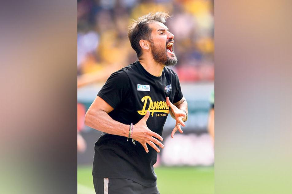 Diese Bilder der bisherigen Saison zeigen das Auf und Ab bei Dynamo: Trainer Cristian Fiel mal wild gestikulierend...