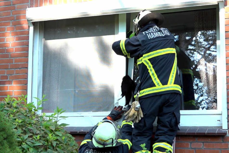 Die Einsatzkräfte befreiten die eingeklemmte Katze.