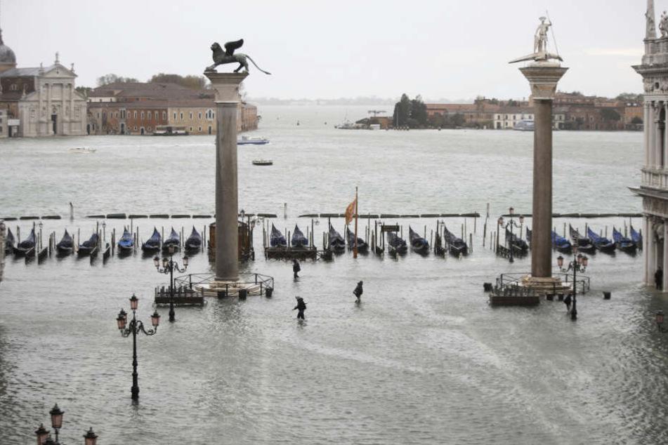 Unwetter-Alarm in Venedig! Steigt der Pegel jetzt wieder dramatisch an?