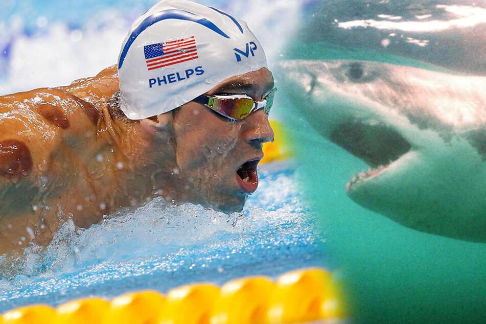 Der Mensch ist ihm als Gegner offenbar nicht mehr genug: Schwimm-Superstar Michael Phelps.