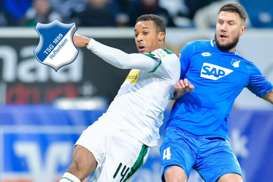Vertrag verlängert: Ermin Bicakcic bleibt in Hoffenheim