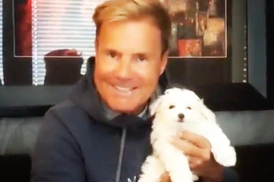 Dieter Bohlen zeigt den neuesten Familiennachwuchs: Hund Rocky.