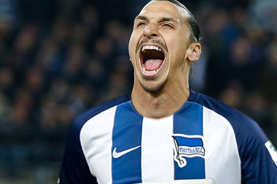 Torjubel bald bei der Hertha? Für ManU traf der Schwede in 46 Pflichtspielen, 28 mal. (Bildmontage)