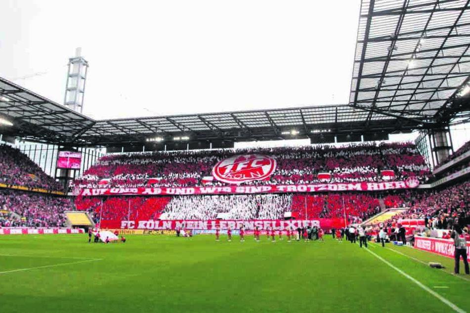Im garantiert proppenvollen Kölner Stadion muss der FC Erzgebirge morgen ran - hoffentlich nicht mit weichen Knien...