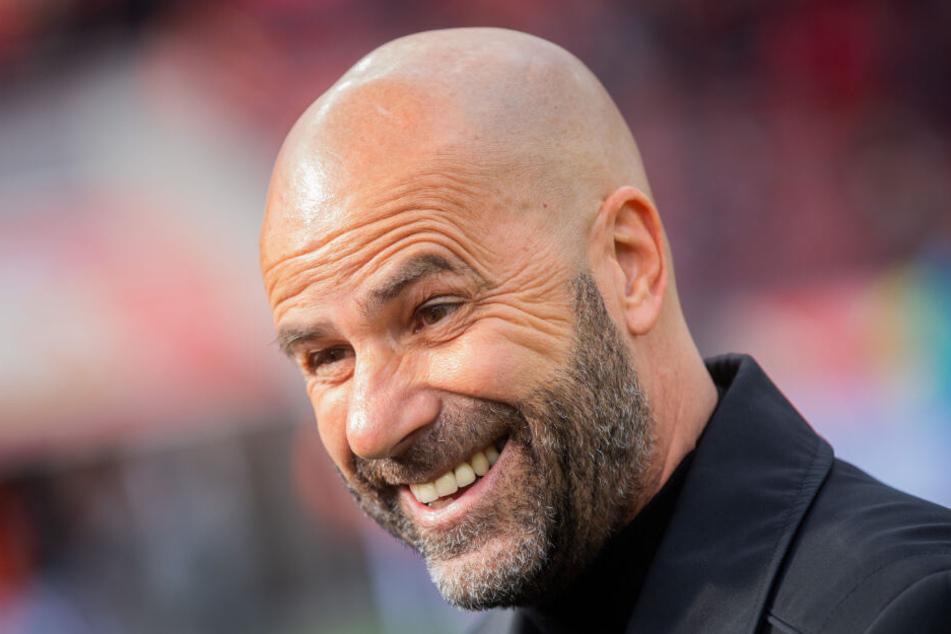 Kerem Demirbay könnte gut in das System von Bayer 04 Leverkusens Trainer Peter Bosz (Foto) passen.