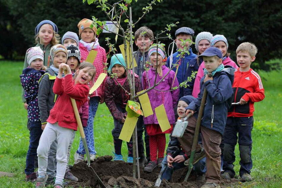 """Diese Knirpse der Christenlehre pflanzten am Mittwoch den """"Baum der guten  Wünsche"""" auf dem Neuen Annenfriedhof."""