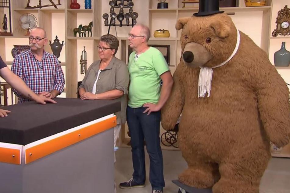 Ein gewaltig großer Bär steht bei Bares für Rares zum Verkauf.