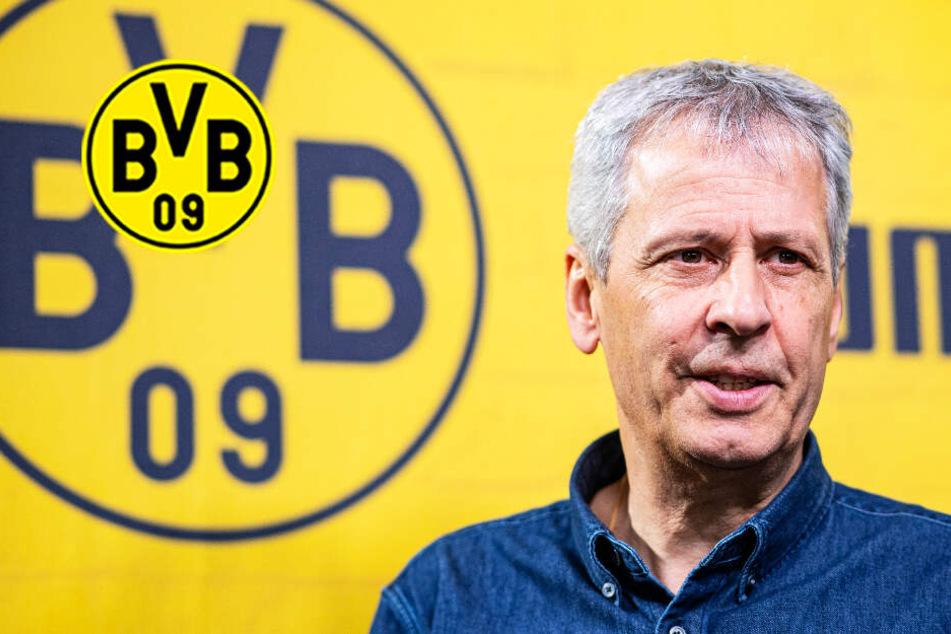 Brisantes Duell! BVB-Coach Favre kämpft bei Ex-Klub Hertha BSC um seinen Job