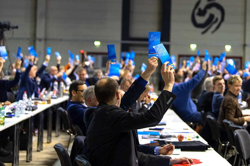 AfD-Abgeordnete bei der Europaversammlung im sächsischen Riesa.