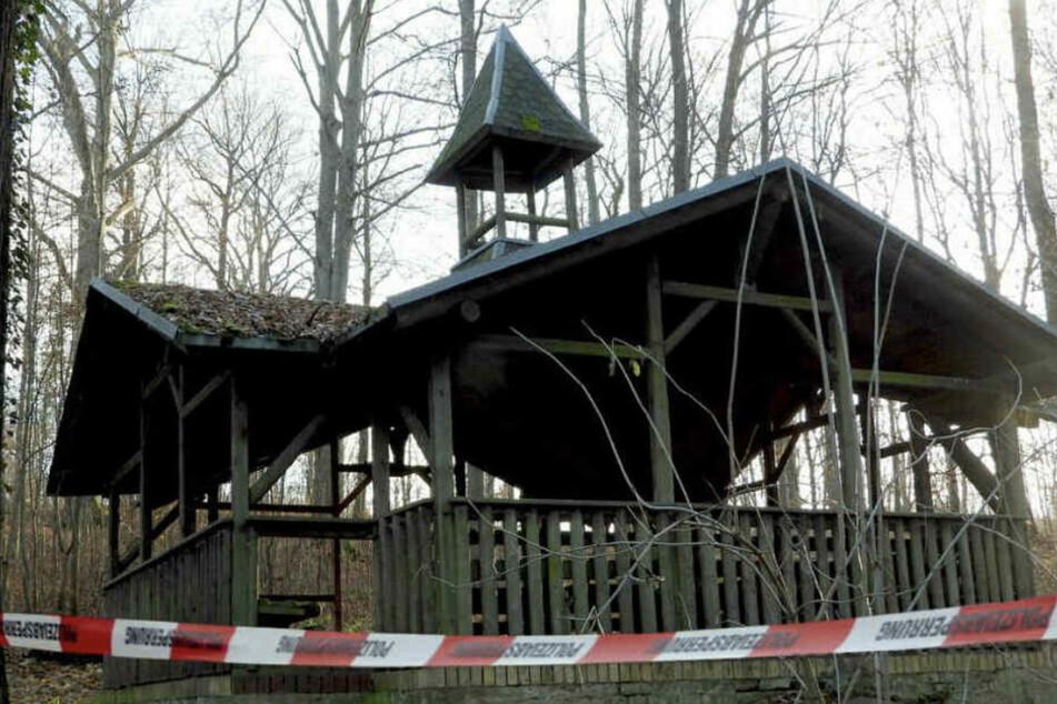 Im Grimmaer Stadtwald soll der 29-Jährige in einen Hinterhalt gelockt worden sein. (Archiv)