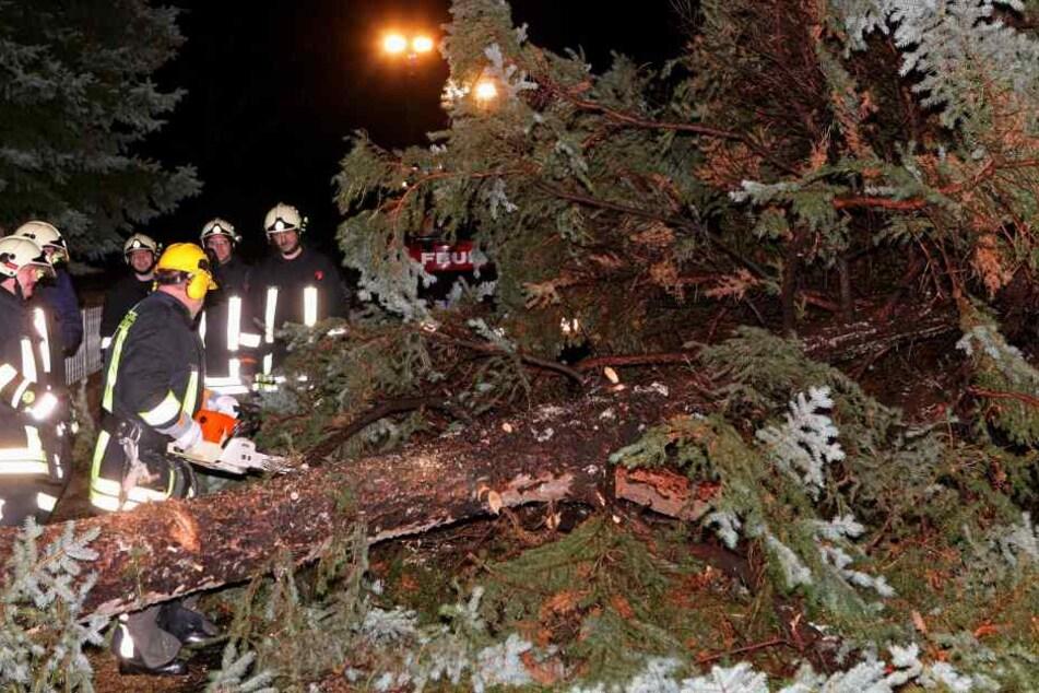 Umgestürzte Bäume können am Freitagmorgen zu starken Behinderungen im Berfusverkehr führen.