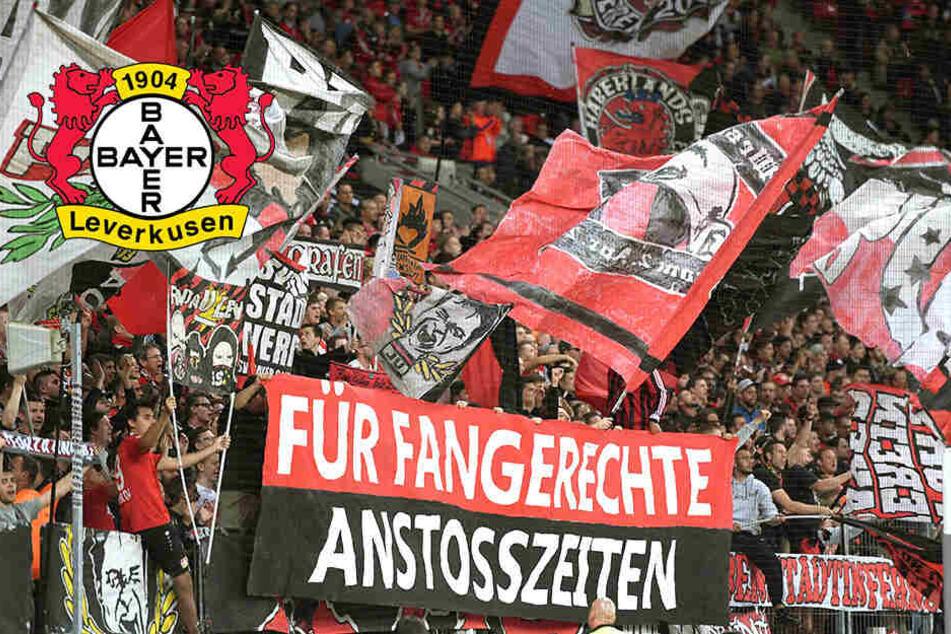 Schreckmoment in Bundesliga! Leverkusen-Fan stürzt kopfüber vom Zaun