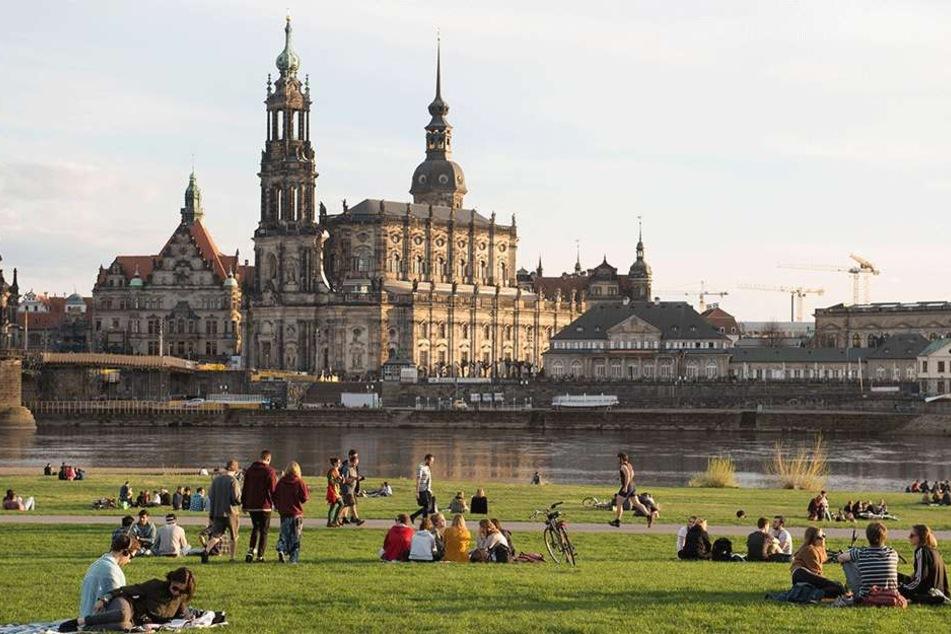 Dresden will sich während der Kongress-Tage von seiner besten Seite zeigen.