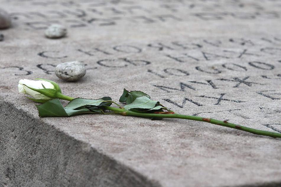 Eine weiße Rose liegt auf einem Gedenkstein bei der Gedenkveranstaltung zur Erinnerung an die Opfer der Pogromnacht von 1938 (Archivbild).