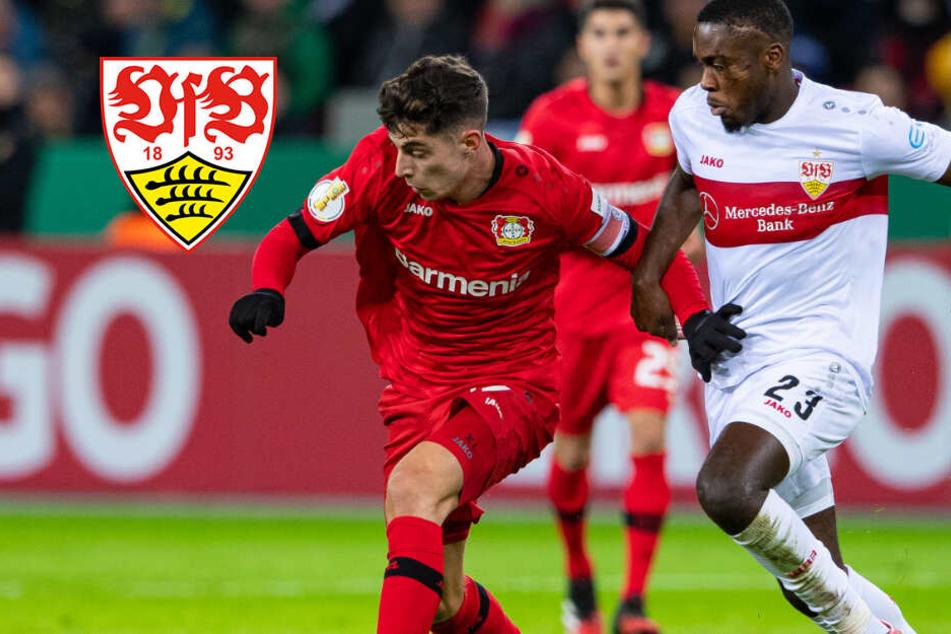 Aus der Traum! VfB Stuttgart scheitert an Bayer Leverkusen im DFB-Pokal