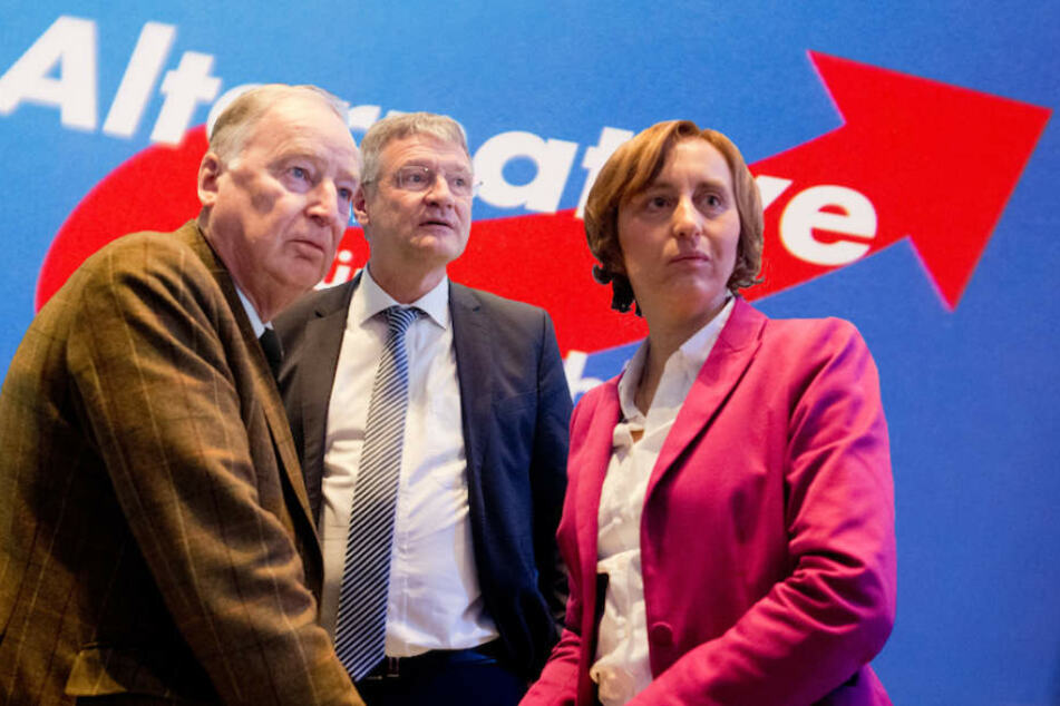Die AfD-Spitze um Alexander Gauland, Jörg Meuthen und Beatrix von Storch dürfte die Umfragewerte freuen. (Bildmontage)