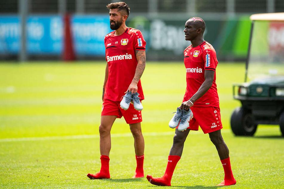 Kerem Demirbay (l.) und Moussa Diaby dürften für Bayer 04 Leverkusen große Verstärkungen sein.