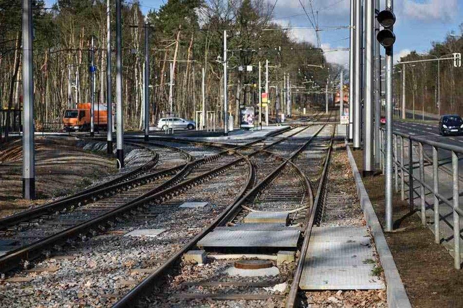 Über die neu verlegten Gleise im Bereich der alten Wendeschleife Diebsteig können die Straßenbahnen bald mit bis zu 60 Stundenkilometern düsen.
