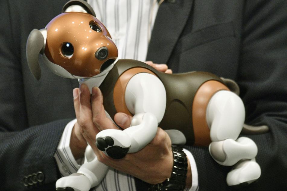 Japan, Tokio: Sonys Roboterhund Aibo wird auf einer Veranstaltung vorgestellt. Kleine Roboter erfreuen sich in Japan während der Corona-Pandemie wachsender Nachfrage als Ersatz für zwischenmenschlichen Kontakt.