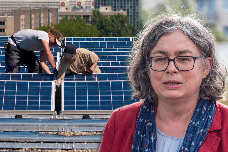 """Dresden und die Erderwärmung: Rathaus führt """"Klima-Check"""" ein"""