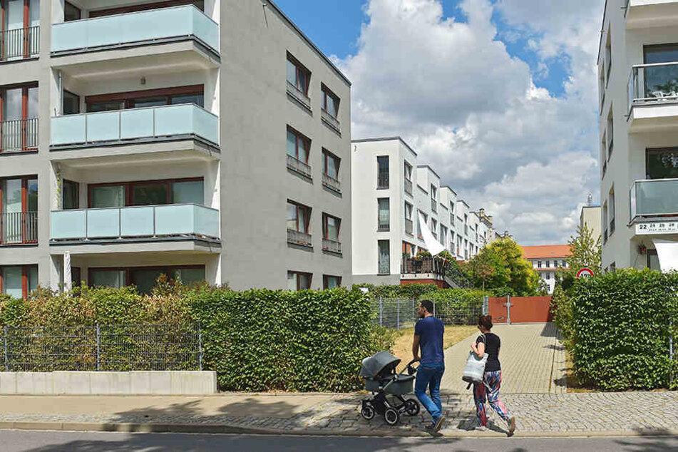 Für Neubaugebiete, wie hier oberhalb des Alaunparks, müssten zukünftig weniger Stellplätze gebaut werden.