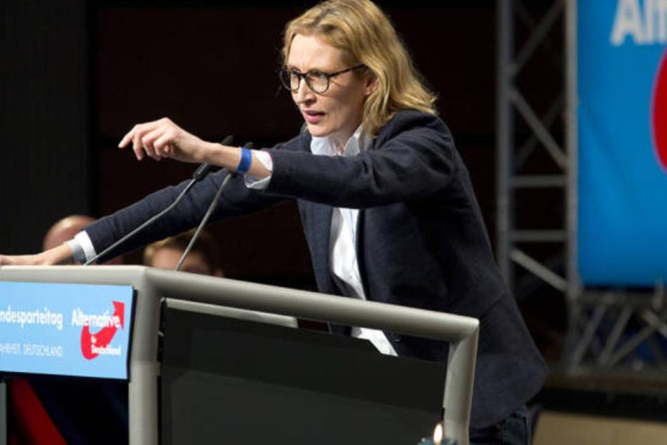 """AfD-Bundesvorstandsmitglied Alice Weidel wollte es """"sozial-elektrisch"""" im Wahlkampf."""