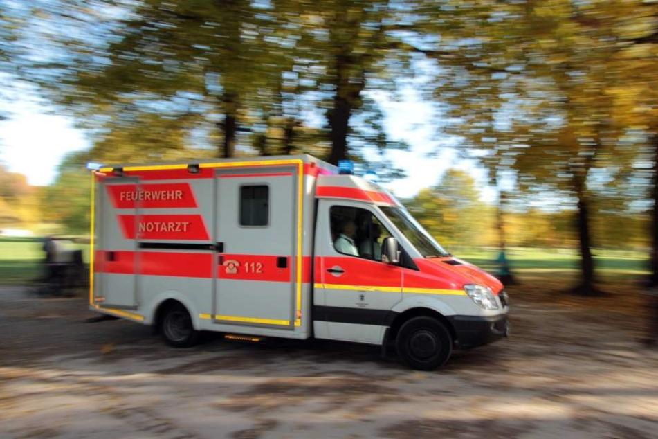 In Bayern wurde eine 50-Jährige von einem Baum erschlagen. (Symbolbild)