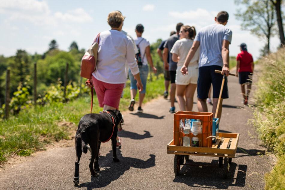 Stuttgart, 21. Mai 2020: Eine Gruppe geht am Vatertag mit einem Bollerwagen durch die Weinberge rund um die Stadtteile Rotenberg und Uhlbach.