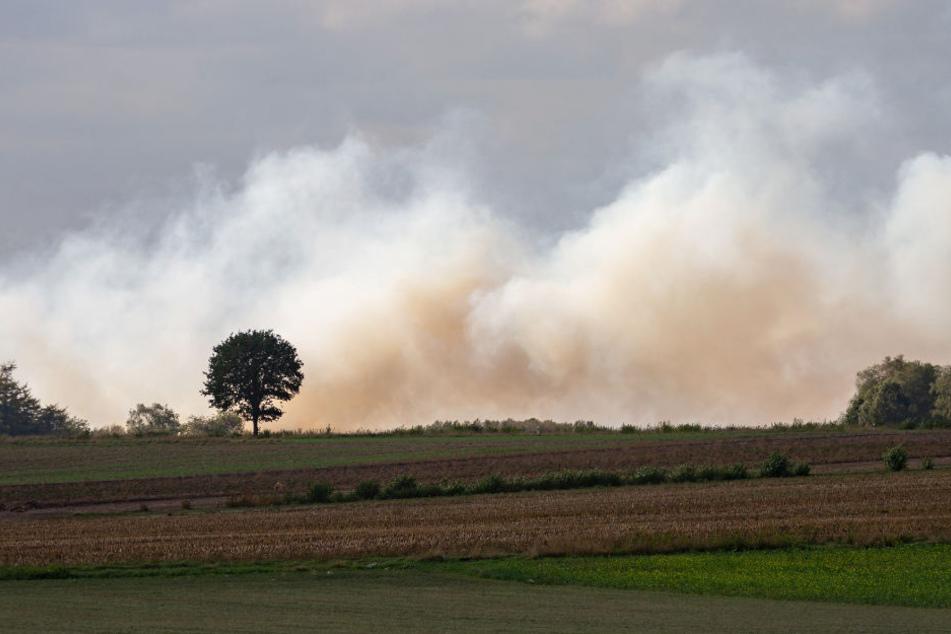 Der Brand zog über die benachbarten Felder hinweg.