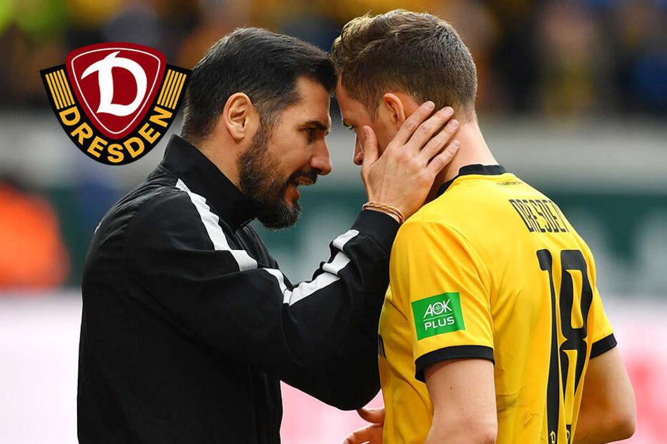 6. Dynamo-Jahr! Bekommt Jannik Müller mehr Verantwortung übertragen?