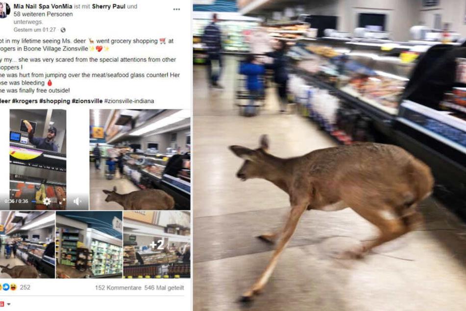So teilte Mia die Fotos des Vorfalls auf Facebook.