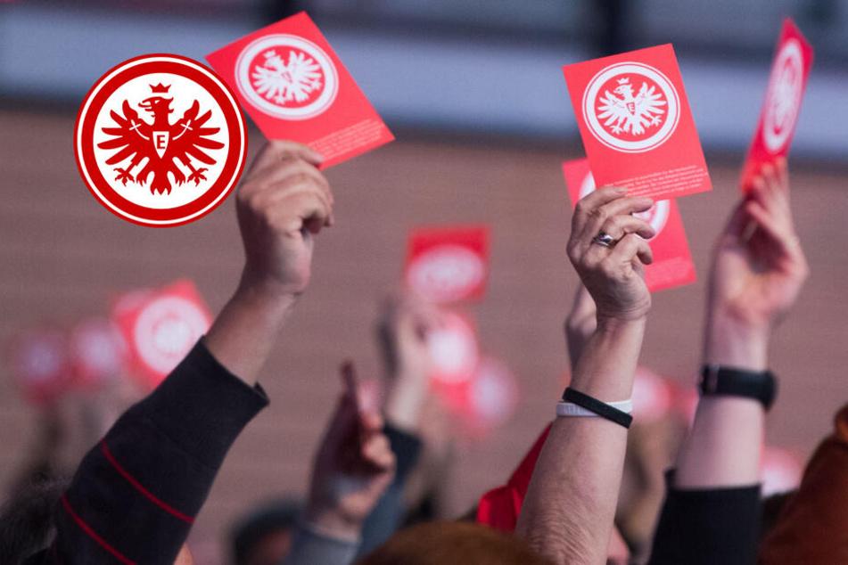 Nazi-Vergangenheit: Eintracht erkennt Präsident den Ehren-Vorsitz ab